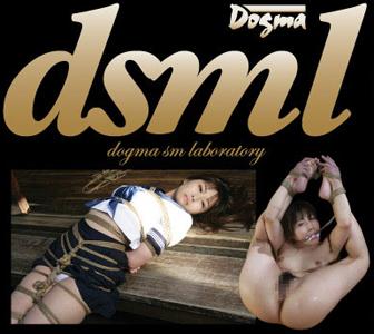 dsml_logo.jpg